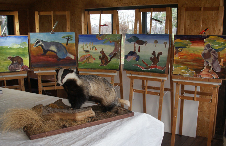 kcw tekenen en schilderen voor de jeugd vanaf 10 jaar 2